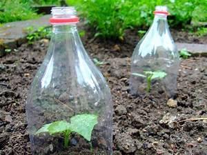 Pflanzen Bewässern Mit Plastikflasche :  ~ Frokenaadalensverden.com Haus und Dekorationen