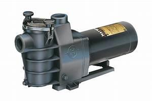 Max Flo Pump By Hayward - Pool Equipment