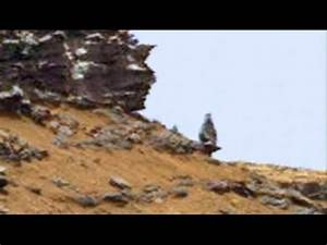 Curiosity Rover: Mysterious Pillar, Mars Anomalies - YouTube