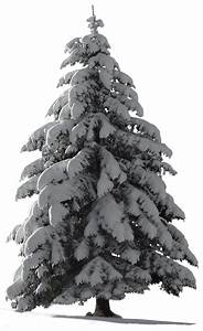 Christmas Tree Snow for my watcher ~ STOCK by AStoKo on ...