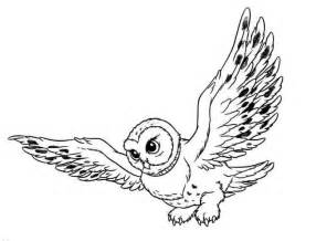owl coloring pages coloringpages1001