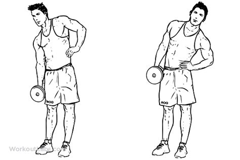 Roman Chair Abs Workout by 8 Common Exercises That Are Wasting Your Time Trophy
