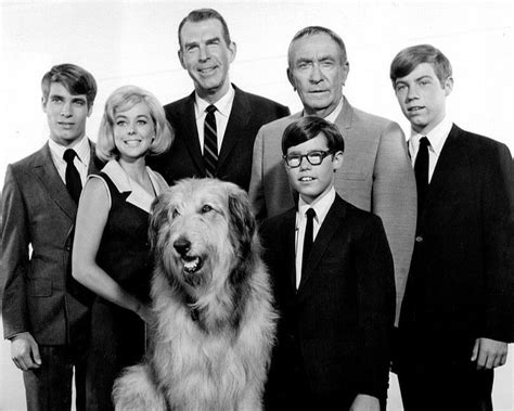 1967 CAST FROM THE TV SERIES 'MY THREE SONS' - 8X10 PUBLICITY PHOTO (AB-038) | eBay