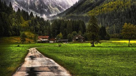 nature landscape mountain forest farm grass snow
