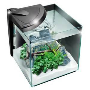 vente de petit aquarium en ligne aquarium de petites dimensions