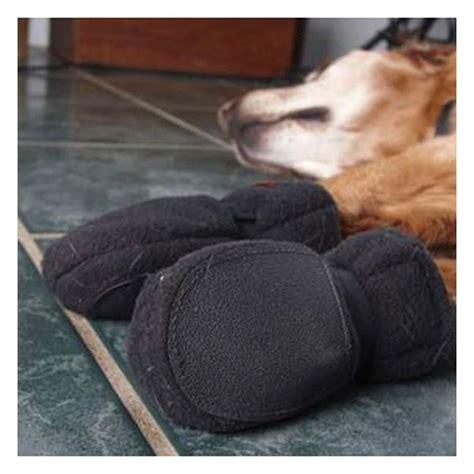 dog booties for hardwood floors