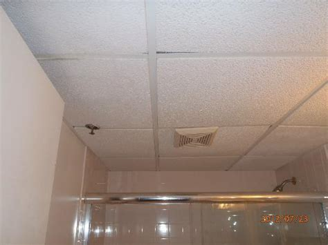 drop ceiling with tiles in bathroom picture of