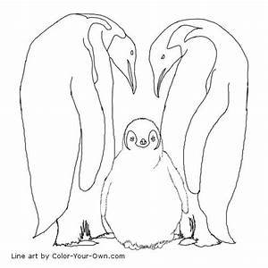 Emperor Penguin Pictures To Print