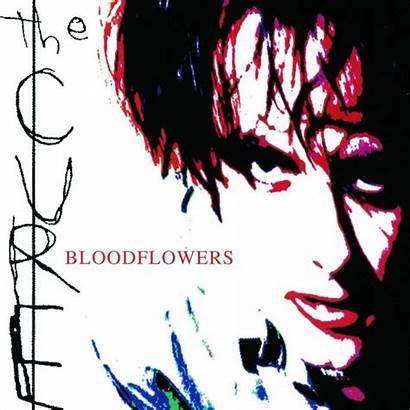 Cure Bloodflowers Musicmeter 2000 Album