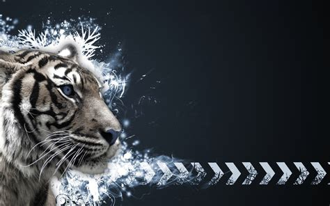 Cool Car Wallpapers For Desktop 3d Animal by Cool Wallpapers Of Tigers 54 Images