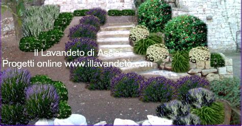progetti piccoli giardini privati progetti gratuiti per giardini fioriti e profumati