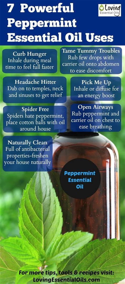 powerful peppermint essential oil