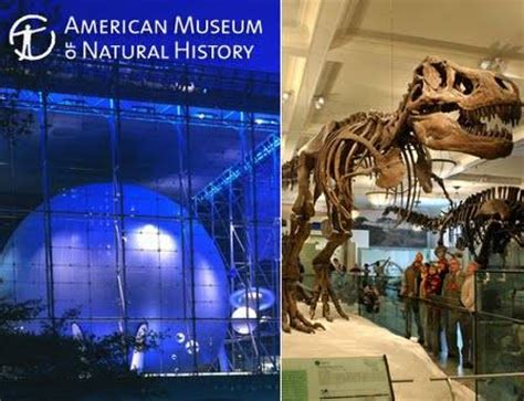 entrance  american museum  natural history
