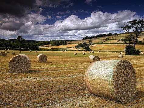wallpaper summer farm field hay clouds  full