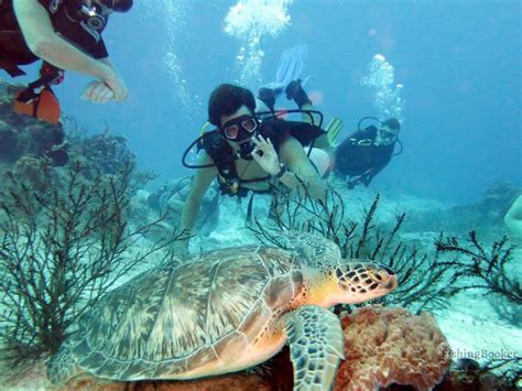 To compare insurance rates from the best companies in your locale, enter your zip code below. Hanks Scuba LLC (Destin) - Updated 2021 Prices - FishingBooker