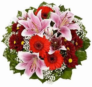 Bilder Von Blumenstrauß : blumen vivaldi in see im paznauntal tirol ~ Buech-reservation.com Haus und Dekorationen