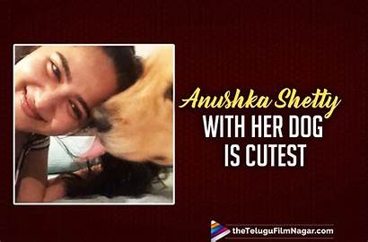 Anushka Dog Shetty Latest