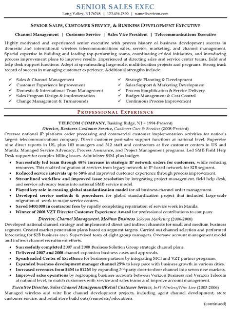 resume sample  senior sales executive resume career