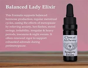 Balanced Lady Elixir In 2020
