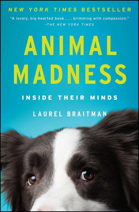 animal madness book  laurel braitman official