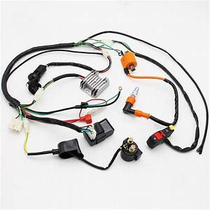 Ebay Advertisement  Complete Motorcycle Cdi Coil Loom For