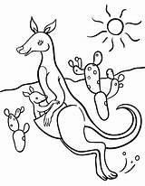 Kangaroo Coloring Pages Printable Animal Coloringcafe Pdf Sheet Colouring Printables Sheets Stencils Button Prints Standard Below Kangaroos sketch template