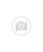 справка для водительского удостоверения 2019