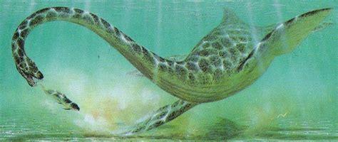 elasmosaurus dinosaurs photo  fanpop