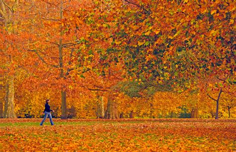 Top Things To Do In London In The Fall