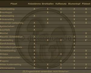 Austernpilze Selber Züchten : anleitung pilze selber z chten im haus und garten dikarbion ~ Orissabook.com Haus und Dekorationen