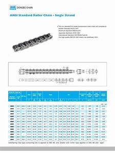 Ansi Standard Roller Chain