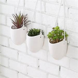 Modern Planters – Hang Your Plants From The Ceiling