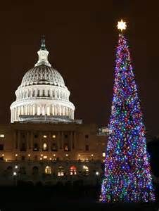 national christmas tree washington dc neat stuff pinterest