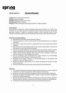 Spring Wireless Service Manager Job Description