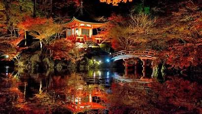 Nature Japanese Garden Colorful Amazing