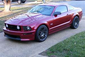 "Cervini's 05-09 Mustang 3"" Cobra R Hood Debut!!! - Page 2 - The Mustang Source - Ford Mustang Forums"
