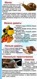 Как похудеть с помощью яблочного уксуса? | «страна советов».
