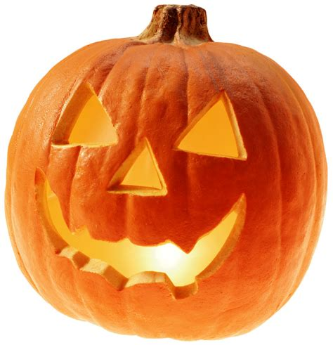 Image result for pumpkin