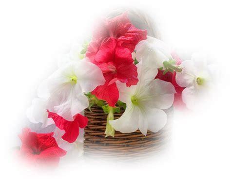 idee deco grand vase transparent idee deco pour grand vase transparent obasinc