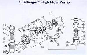Pool Pump Parts Diagram