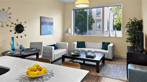 apartment living room ideas living room and dining decorating ideas magnificent decor