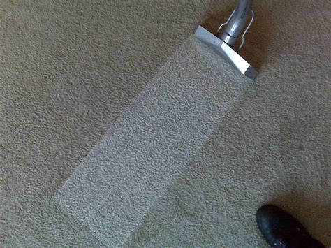 cleaning carpet commercial carpet cleaning st louis mo mr clean s carpet