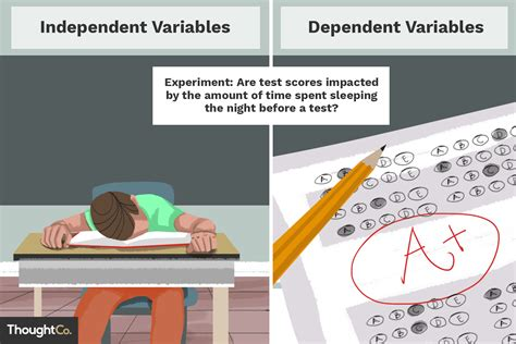 Independent and Dependent Variable Examples