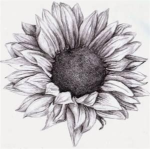 sunflower drawing - Google zoeken | Plaatjes | Pinterest ...