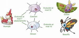 Cascoon Evolution Chart Images - Reverse Search