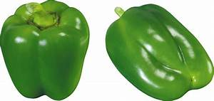 Pepper PNG image, free download pepper PNG picures