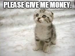 Give Me Money Meme - sad cat meme imgflip
