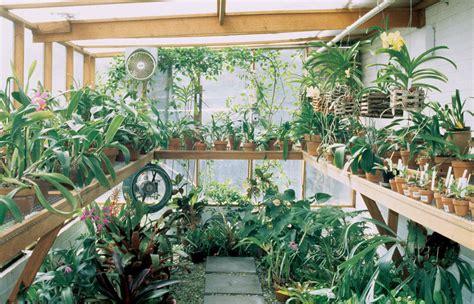 space saver tips for winter vegetable gardening arkansas