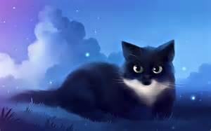Cool Cute Cat Drawings