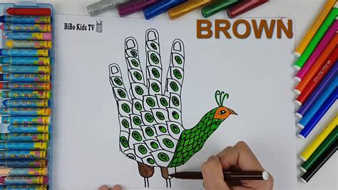 draw peacock  hand learn  color  kids